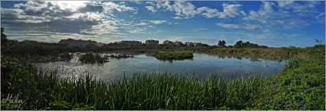 Laguna Norte del humedal Charca de Suárez, en Motril