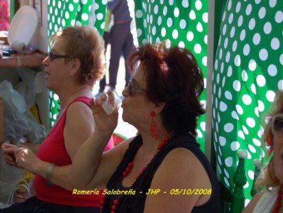 Carroza LOS DE SIEMPRE de Motril en la Romeria de Salobre�a
