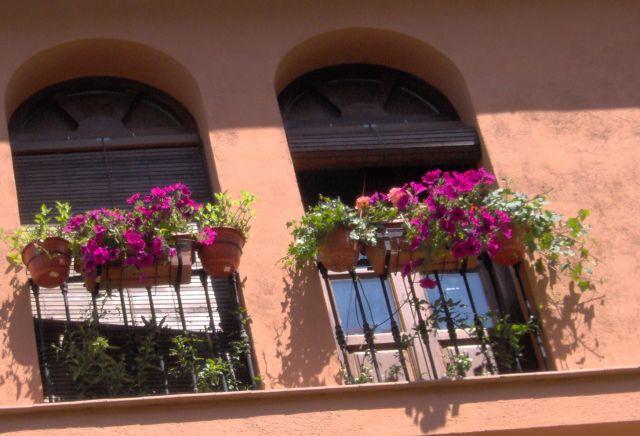 Balcones con flores fotos de granada y su provincia for Balcones con plantas