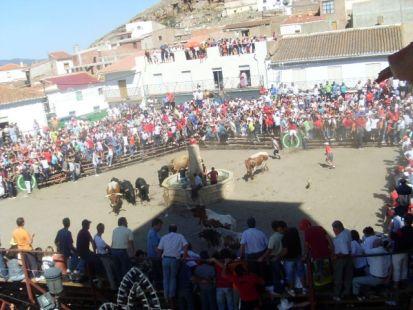 Toros en La Calahorra 2009