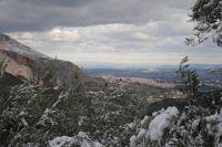 Jaén entre olivos blancos