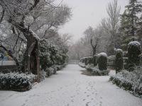 Nieve en la Alameda