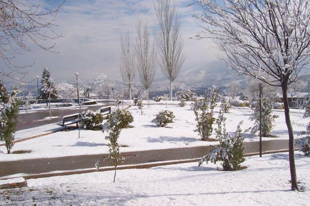 pasear por el parque blanco