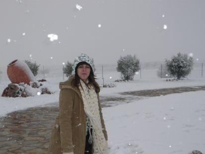camino nevado II