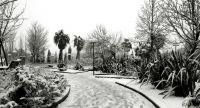 Jaén en Blanco