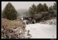 Persiguiendo a la Nieve