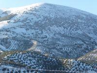 Sierra Mágina nevada