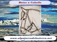 www.alpujarradelasierra.net