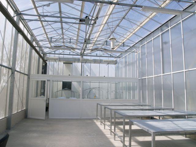 Invernadero de cristal
