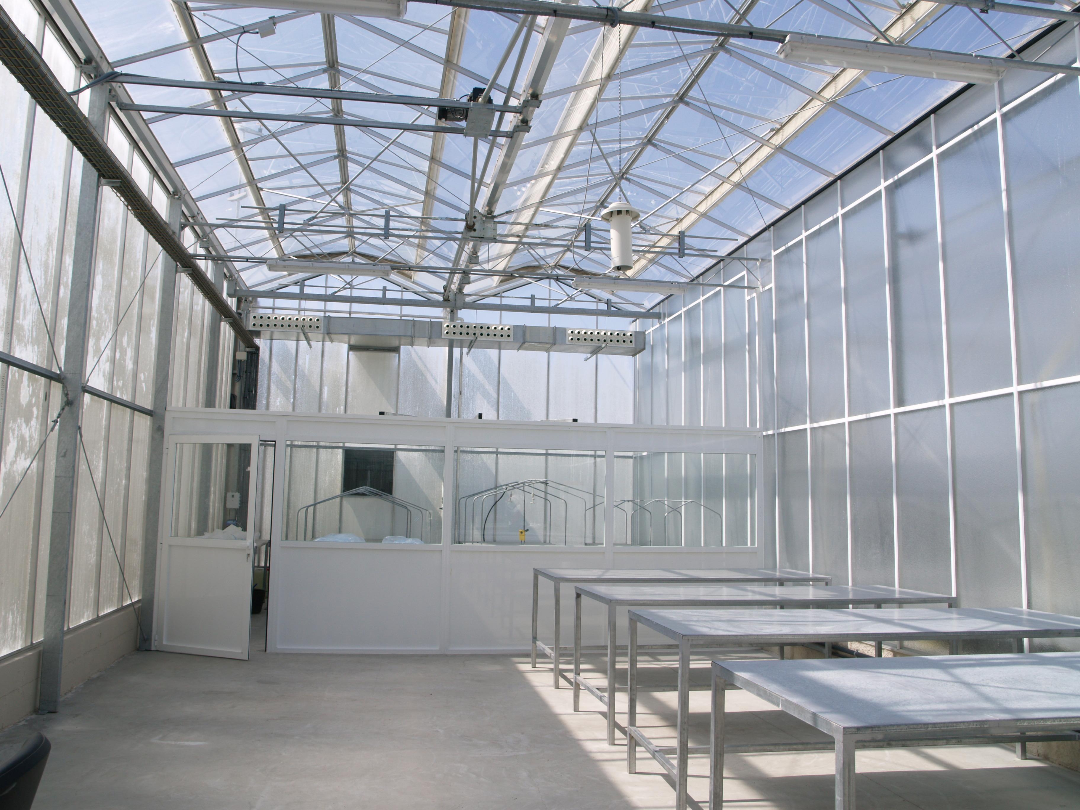 Invernadero de cristal fotos de curiosas - Invernadero de cristal ...