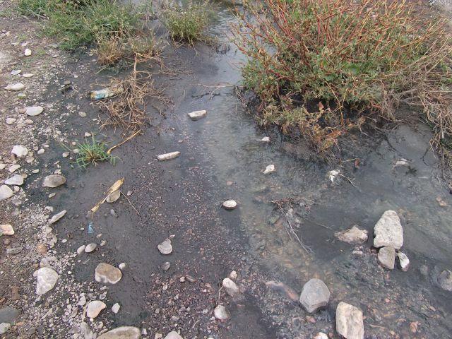 aguas fecales en el rio andarax
