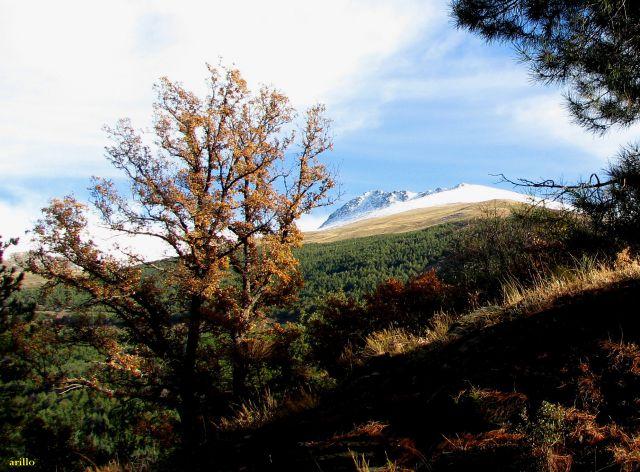 Loma del Calvario (otoño)