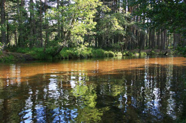 reflejos en el agua versión color