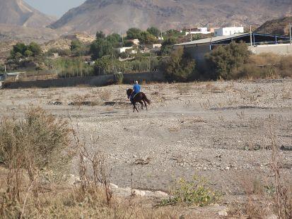 un jinete cabalga por el rio andarax