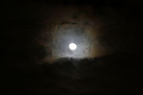 Claro de Luna 13122011