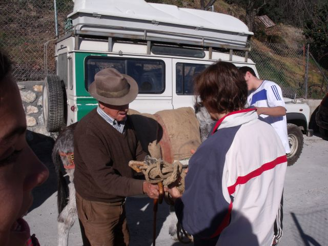 Soportújar, burro de Fulgencio 37