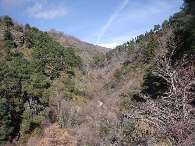 Soportújar, cuenca Río Chico, 050111