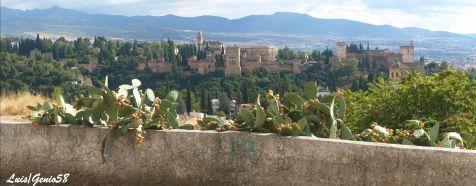 La Alhambra desde el mirador del alto de Palomares
