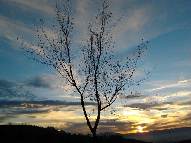 paisaje raquel sanchez del pino