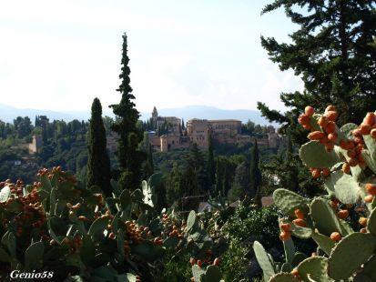 La Alhambra desde la Rauda