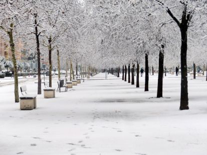 Nieve hoy..