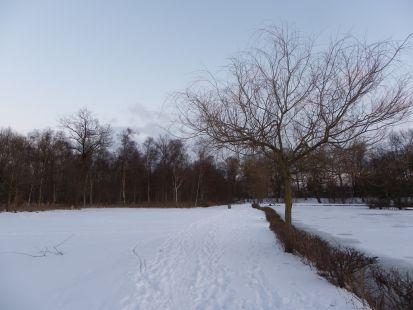 Horsens nevado