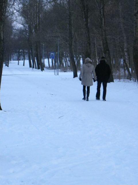 Paseantes por Horsens nevado