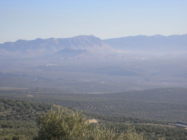 Valle del Guadalquivir