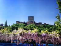 Alhambra sobre Glicinias