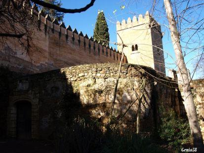Puerta Torre de los Picos