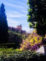 Torre De LA VeLa desde la VIctoriA