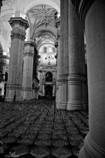 otro punto de vista Catedral