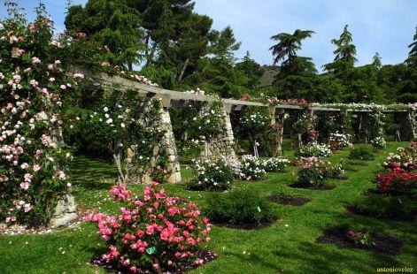 Jardines Cervantes de Barcelona