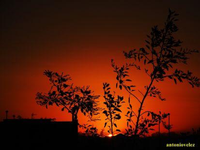 Amanecer en los campos de Níjar