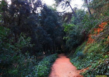 Parque del Laberinto-Barcelona