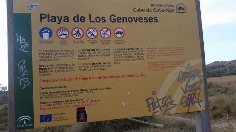Los Genoveses